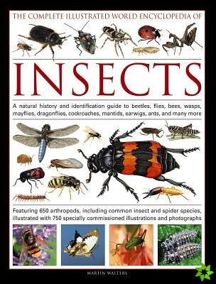 Complete Illustrated World Encyclopedia of Insects