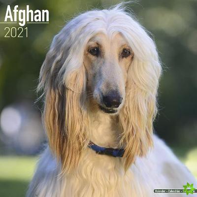 Afghan 2021 Wall Calendar