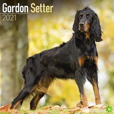 Gordon Setter 2021 Wall Calendar