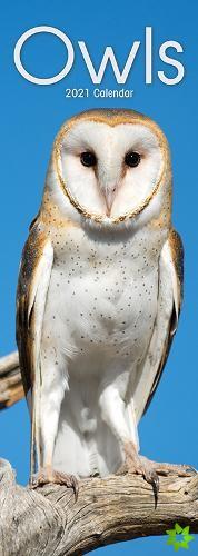Owls 2021 Slim Calendar