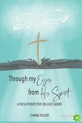 Through My Eyes from His Spirit