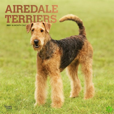 AIREDALE TERRIERS 2021 SQUARE FOIL
