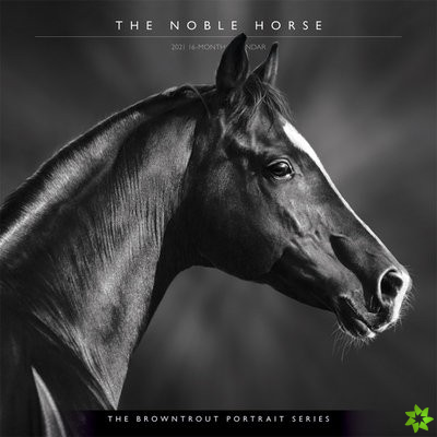 HORSE THE NOBLE THE BROWNTROUT PORTRAIT