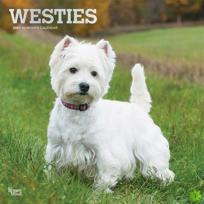 WEST HIGHLAND WHITE TERRIERS 2021 SQUARE