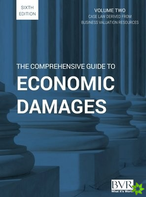 Comprehensive Guide to Economic Damages, 6th Edition (Volume Two)