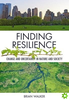 Finding Resilience