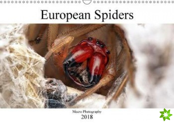 European Spiders 2018