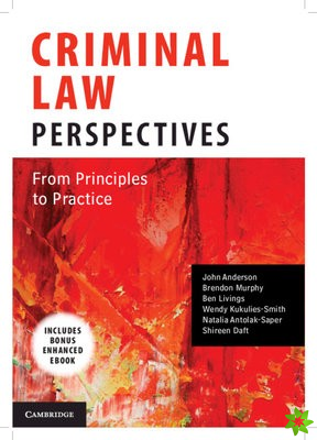 Criminal Law Perspectives