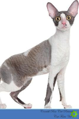 Cornish Rex Cat Presents