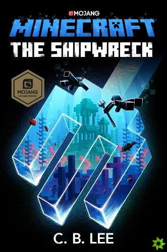 Minecraft: The Shipwreck