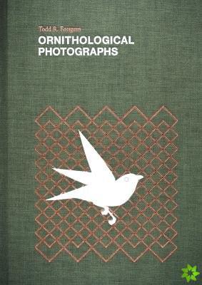 Ornithological Photographs
