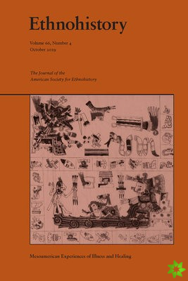 Mesoamerican Experiences of Illness and Healiing