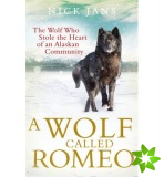 Wolf Called Romeo
