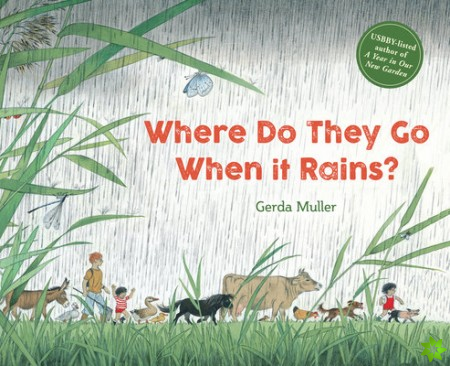 Where Do They Go When It Rains?