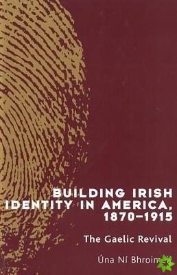 Building Irish Identity in America, 1870-1915