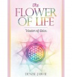 Flower of Life Cards