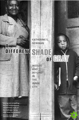 DIFFERENT SHADE GRAY MIDLIFE BEYOND HB