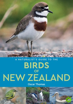 Naturalist's Guide to the Birds of New Zealand
