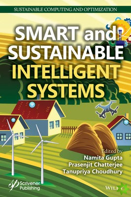 Sustainable Intelligent Computing Systems