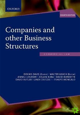 Companies and other Business Structures in South Africa