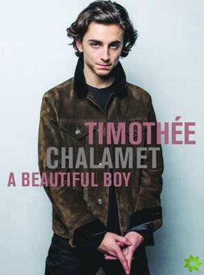 Timothee Chalamet A Beautiful Boy