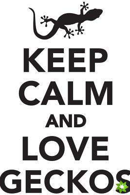 Keep Calm Love Geckos Workbook of Affirmations Keep Calm Love Geckos Workbook of Affirmations