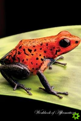 Red Poison Dart Frog Workbook of Affirmations Red Poison Dart Frog Workbook of Affirmations