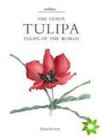 Genus Tulipa, The