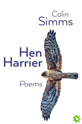 Hen Harrier Poems