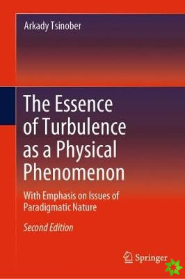 Essence of Turbulence as a Physical Phenomenon