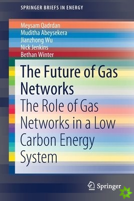 Future of Gas Networks in Low Carbon Energy Systems