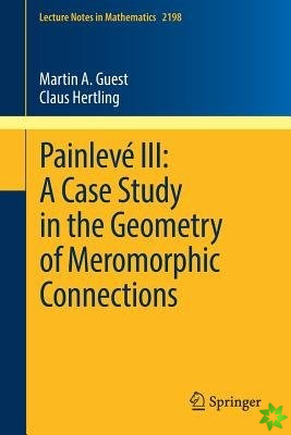 Painleve III: A Case Study in the Geometry of Meromorphic Connections