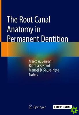 Root Canal Anatomy in Permanent Dentition