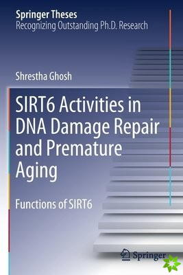 Sirt6 Activities in DNA Damage Repair and Premature Aging