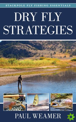Dry Fly Strategies