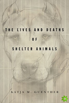 Lives and Deaths of Shelter Animals