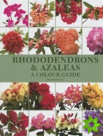 Rhododendrons and Azaleas