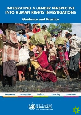 Integrating a gender perspective into human rights investigations